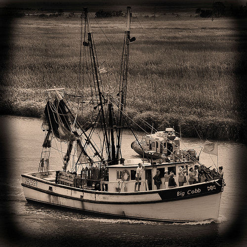 wild-georgia-shrimp-boat-big-cobb-blessing-of-the-fleet-darien-ga-mcintosh-county-atlantic-coast-endangered-way-of-life-picture-image-photo-copyright-brian-brown-photographer-vanishing-c