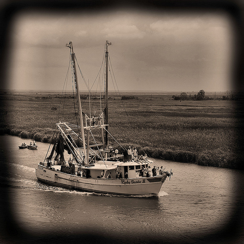 wild-georgia-shrimp-boat-ladie-susie-ii-blessing-of-the-fleet-darien-ga-mcintosh-county-atlantic-coast-endangered-way-of-life-picture-image-photo-copyright-brian-brown-photographer-vanis