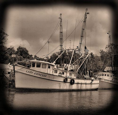 wild-georgia-shrimp-boat-lady-vanessa-blessing-of-the-fleet-darien-ga-mcintosh-county-atlantic-coast-endangered-way-of-life-picture-image-photo-©-brian-brown-photographer-vanishi