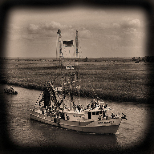 wild-georgia-shrimp-boat-miss-bertha-blessing-of-the-fleet-darien-ga-mcintosh-county-atlantic-coast-endangered-way-of-life-picture-image-photo-copyright-brian-brown-photographer-vanishin
