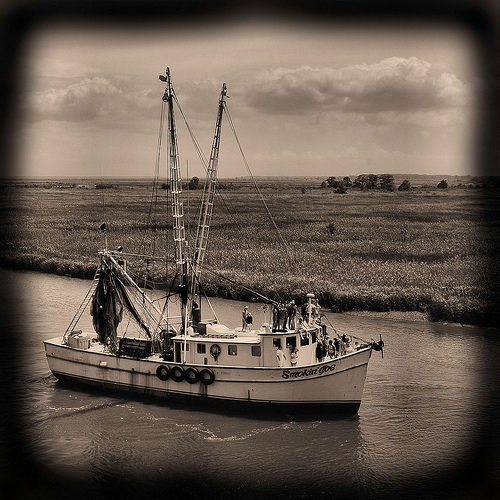 wild-georgia-shrimp-boat-smokin-joe-blessing-of-the-fleet-darien-ga-mcintosh-county-atlantic-coast-endangered-way-of-life-picture-image-photo-copyright-brian-brown-photographer-vanishin