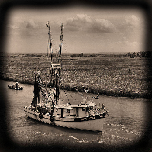wild-georgia-shrimp-boat-wait-n-sea-blessing-of-the-fleet-darien-ga-mcintosh-county-atlantic-coast-endangered-way-of-life-picture-image-photo-copyright-brian-brown-photographer-vanishing