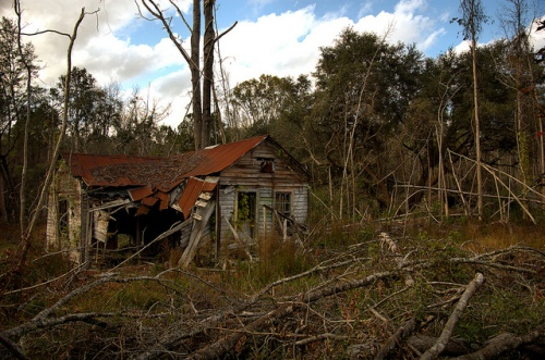 Chatman Community Riceboro GA Liberty County African American Vernacular House Ruins Gutted Abandoned Clear Cut Picture Image Photo © Brian Brown Vanishing Coastal Georgia USA 2012