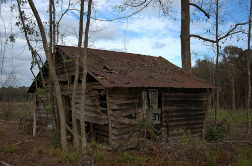 Straw Lachlan McIntosh County GA White Swamp Ancestral Lands of Georgia Pioneers Abandoned Barn Picture Image Photo © Brian Brown Vanishing Coastal Georgia USA 2012