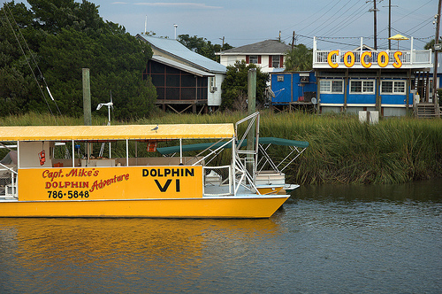 Lazaretto Creek GA Tybee Island Chatham County Captain Mikes Dolphin Tour Boats Ecotourism Coco's Bar Seafood Picture Image Photograph ©  Brian Brown Vanishing Coastal Georgia USA 2013