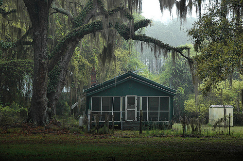 Hog Hammock GA Sapelo Island Vernacular House with Screened In Front Porch Oak Trees Spanish Moss Picture Image Photograph © Brian Brown Vanishing Coastal Georgia USA 2013