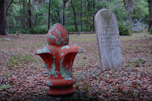 Isabella Robinson Behavior Cemetery Sapelo Island GA Concrete Fleur de lis Picture Image Photograph © Brian Brown Vanishing Coastal Georgia USA 2013