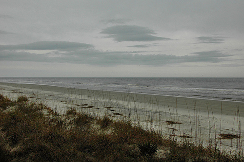 Nannygoat Beach Sapelo Island GA In the Rain Dunes Atlantic Ocean Ecosystem Picture Image Photograph © Brian Brown Vanishing Coastal Georgia USA 2013