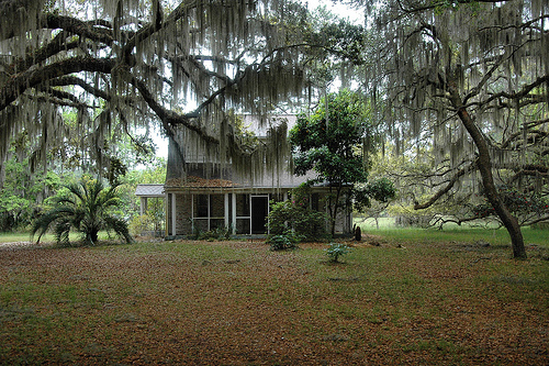 Sapelo Island GA Reynolds Mansion Outbuilding Guest or Overseers House Canopy of Spanish Moss Picture Image Photograph © Brian Brown Vanishing Coastal Georgia USA 2013