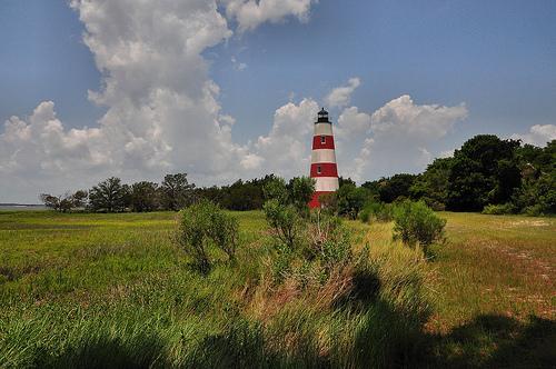 Sapelo Island GA Light Lighthouse Station Picture Image Photograph © Brian Brown Vanishing Coastal Georgia USA 2013