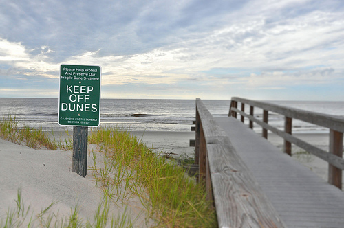 Glory Beach Jekyll Island GA Sea Turtle Nesting Habitat Protected Sand Dunes South End Picture Image Photograph Copyright © Brian Brown Vanishing Coastal Georgia USA 2013