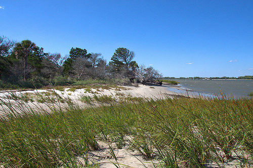 Mouth of the Savannah River at Cockspur Island GA Picture Image Photograph Copyright © Brian Brown Vanishing Coastal Georgia USA 2013