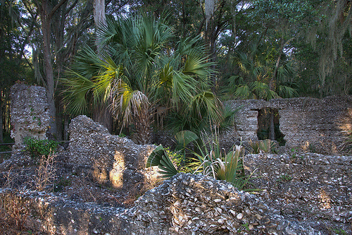 Tolomato Island GA William Carnochan Sugar Mill Ruins Early 1800s Tabby Walls Palmettos Early Industry Photograph Copyright Brian Brown Vanishing Coastal Georgia USA 2013