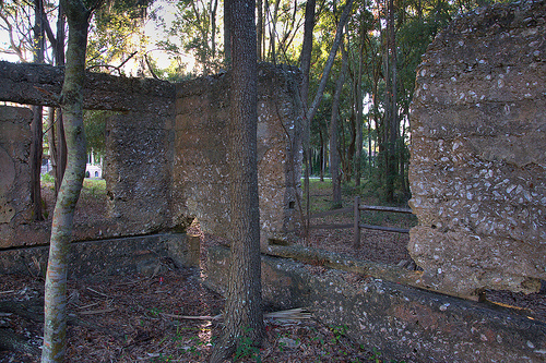 Tolomato Island GA William Carnochan Sugar Mill Ruins Tabby Walls Early Industry Photograph Copyright Brian Brown Vanishing Coastal Georgia USA 2013