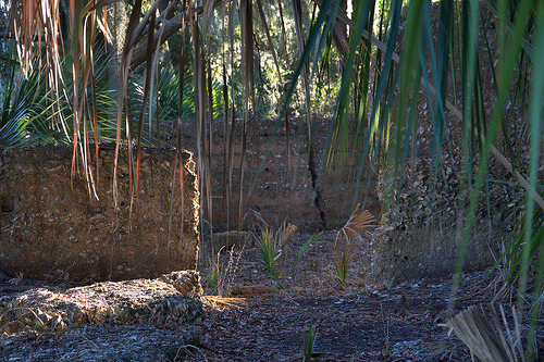Tolomato Island GA William Carnochan Sugar Mill Ruins Tabby Walls Palmettos Photograph Copyright Brian Brown Vanishing Coastal Georgia USA 2013