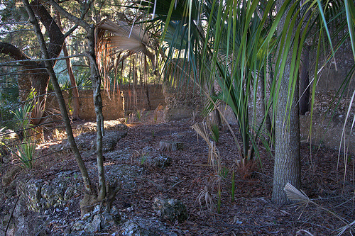 Tolomato Island GA William Carnochan Sugar Mill Ruins Tabby Walls Photograph Copyright Brian Brown Vanishing Coastal Georgia USA 2013