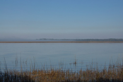 Fog Bank on Crooked River GA Atlantic Salt Marsh Habitat Photograph Copyright Brian Brown Vanishing Coastal Georgia USA 2014