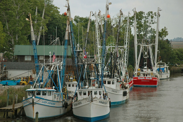 Darien GA Shrimp Boats Blessing of the Fleet 2012 Photograph Copyright Brian Brown Vanishing Coastal Georgia USA 2014