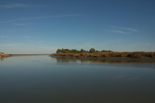 Barbour River McIntosh County GA Harris Neck NWR Photograph COpyright Brian Brown Vanishing Coastal Georgia USA 2014