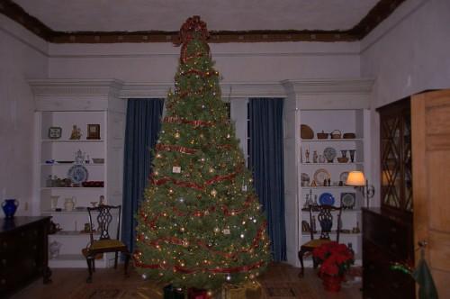 Ashantilly Christmas Tree Darien GA Photograph Copyright Brian Brown Vanishing Coastal Georgia USA 2014