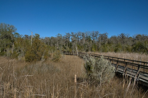 Cay Creek Wetlands Liberty County GA Boardwalk Natural Area Photograph Copyright Brian Brown Vanishing Coastal Georgia USA 2015