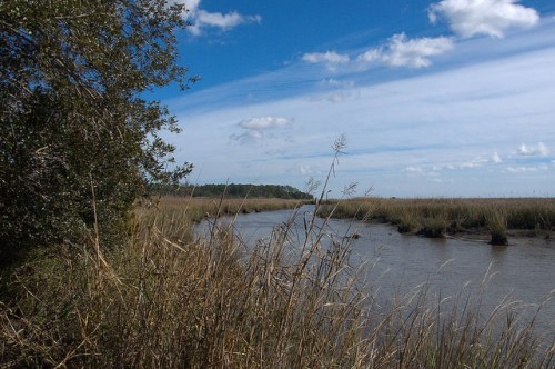 Black Island Creek from Fort King George Darien GA Photograph Copyright Brian Brown Vanishing Coastal Georgia USA 2015