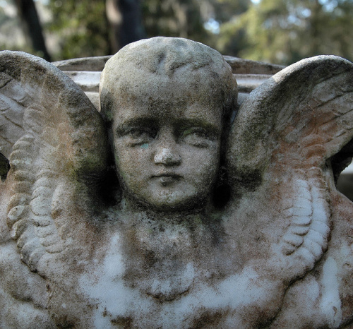vanishing-coastal-georgia-baby-with-wings-head-cherubic-haunting-eyes-victorian-bonaventure-cemetery-savannah-ga-picture-image-photo-copyright-brian-brown-photographer-usa-2012
