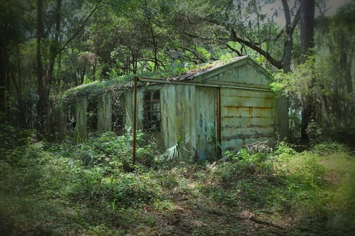 Oatland Island GA Abandoned Barn Photograph Copyright Brian Brown Vanishing Coastal Georgia USA 2015