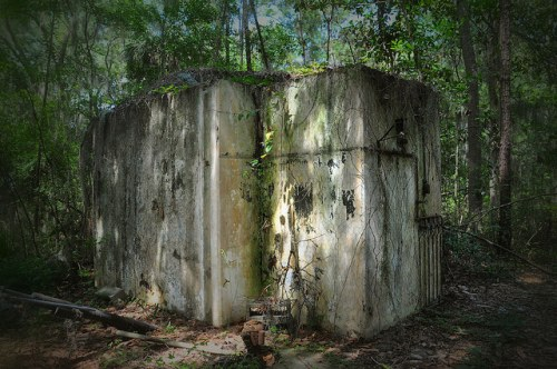 Oatland Island GA CDC Predecessor Abandoned Utility Building Photograph Copyright Brian Brown Vanishing Coastal Georgia USA 2015