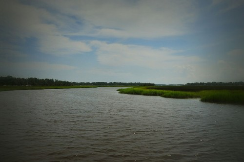 oatland-island-ga-richardson-creek-atlantic-coastal-inlet-spartina-marsh-picture-image-photograph-copyright-brian-brown-vanishing-coastal-georgia-usa-2015