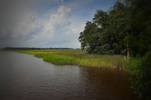 Richardson Creek at Oatland Island Savannah GA Photograph Copyright Brian Brown Vanishing Coastal Georgia USA 2015