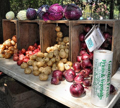 Forsyth Farmers Market Savannah GA Organic Potatoes Onions Red Cabbage Photograph Copyright Brian Brown Vanishing Coastal Georgia USA 2015