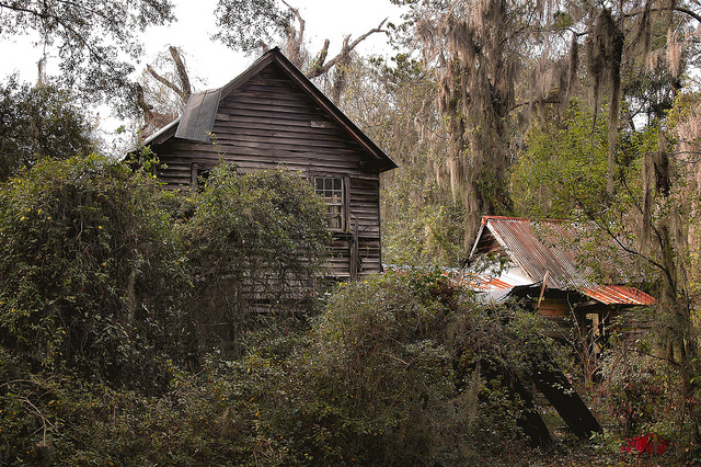crescent-ga-mcintosh-county-abandoned-cracker-i-house-mid-19th-century-vernacular-architecture-detached-kitchen-two-story-picture-image-photo-copyright-brian-brown-photographer-vanishing