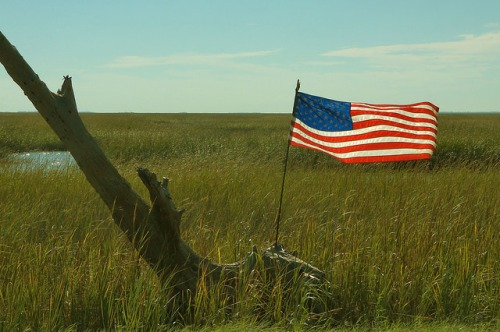 Tybee Island Ga Area Highway 80 US Flag in Marsh Photograph Copyright Brian Brown Vanishing Coastal Georgia USA 2015