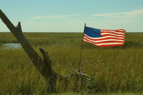 Tybee Island Ga Area Highway 80 US Flag in Marsh Photograph Copyright Brian Brown Vanishing Coastal Georgia USA 2015