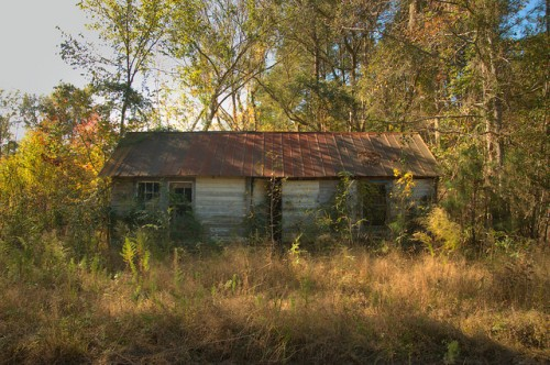 Freedmens Grove GA Liberty County Historic African American Community Vernacular House Photograph Copyright Brian Brown Vanishing Coastal Georgia USA 2015