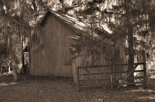 Altama Plantation Glynn County GA Barn Photograph Copyright Brian Brown Vanishing Coastal Georgia USA 2016