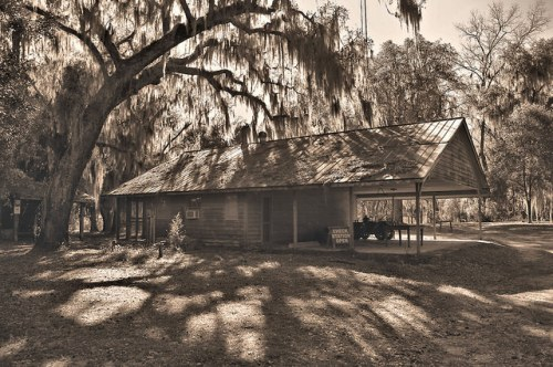 Altama Plantation Glynn County GA Shed Photograph Copyright Brian Brown Vanishing Coastal Georgia USA 2016