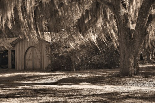 Altama Plantation Glynn County GA Work Barn Arched Door Photograph Copyright Brian Brown Vanishing Coastal Georgia USA 2016