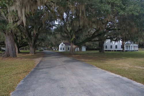 Kilkenny GA Plantation Oak Drive Photograph Copyright Brian Brown Vanishing South Georgia USA 2015
