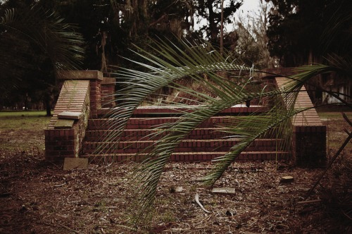 Sunbury Plantation Liberty County GA Front Steps Photograph Copyright Brian Brown Vanishing Coastal Georgia USA 2016