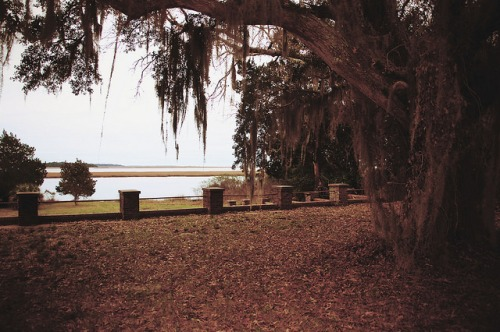 Sunbury Plantation Liberty County GA View of Medway River Blackbeard Creek Photograph Copyright Brian Brown Vanishing Coastal Georgia USA 2016