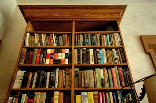 ashantilly-darien-ga-bill-haynes-jr-library-bookshelf-bibliophile-collector-renaissance-man-georgia-coast-picture-image-photo-copyright-brian-brown-vanishing-coastal-georgia-usa-2011