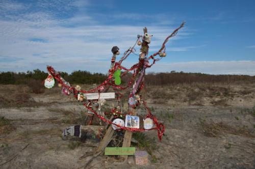 st-simons-island-ga-east-beach-christmas-tree-photograph-copyright-brian-brown-vanishing-coastal-georgia-usa-2016